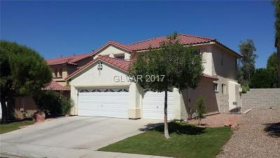 Henderson Single Family Home For Sale: 3024 Panorama Ridge Drive