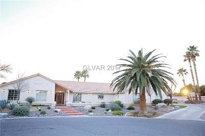 Clark County Single Family Home For Sale: 4075 Dustin Avenue