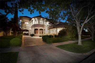 Single Family Home For Sale: 1101 Trophy Hills Drive