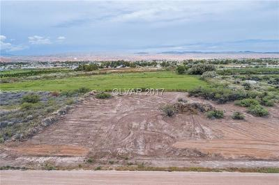 Overton NV Residential Lots & Land For Sale: $49,000