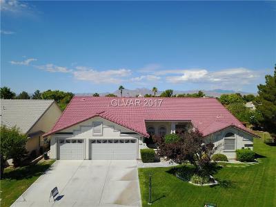 Las Vegas Single Family Home For Sale: 5113 Desert Lily Lane