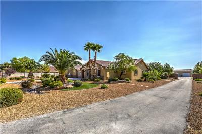 Las Vegas Single Family Home For Sale: 8350 Haven Street