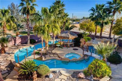 Las Vegas Single Family Home For Sale: 6717 Cambium Pine Avenue