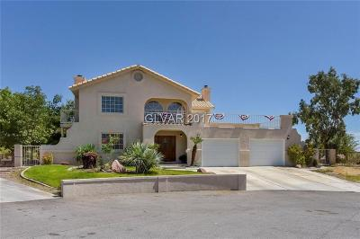Las Vegas Single Family Home For Sale: 9970 La Mancha Avenue