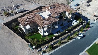 Boulder City, Henderson, Las Vegas, North Las Vegas Single Family Home For Sale: 27 Shadow Canyon Court