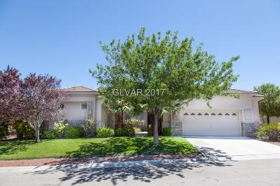 Las Vegas Single Family Home For Sale: 10561 Regal Stallion Avenue