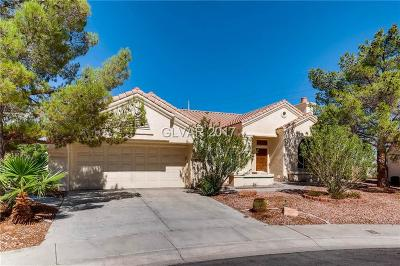 Las Vegas  Single Family Home For Sale: 3125 Brightridge Drive
