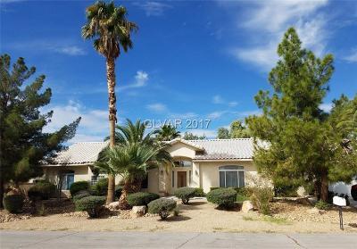 Clark County Single Family Home For Sale: 102 Mesa Verde Lane