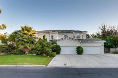 Las Vegas Single Family Home For Sale: 9909 Robin Oaks Drive
