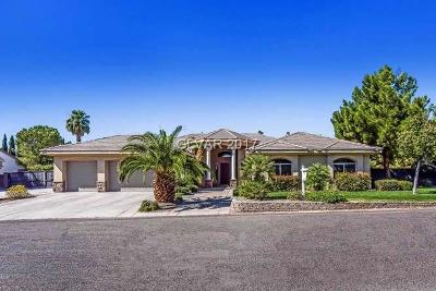 Las Vegas Single Family Home For Sale: 231 Eldorado Lane