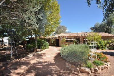 Clark County Single Family Home For Sale: 7744 Rancho Destino Road