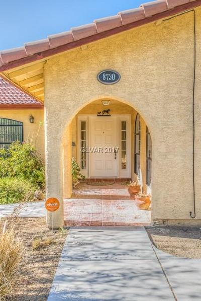 Las Vegas Single Family Home For Sale: 8730 Jakes Place