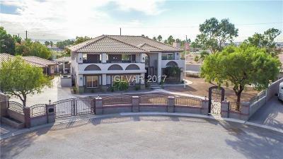 Clark County Single Family Home For Sale: 6571 Oquendo Road
