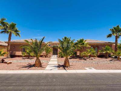 Henderson, Las Vegas Single Family Home For Sale: 7028 Via Campanile Avenue