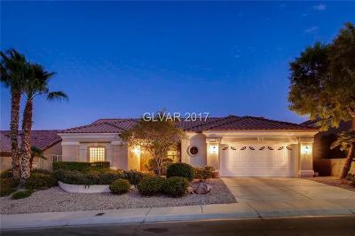 Las Vegas  Single Family Home For Sale: 2824 Darby Falls Drive