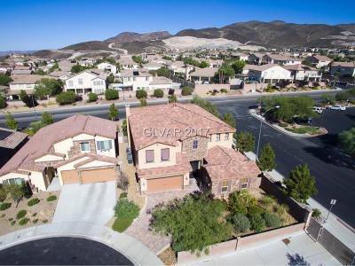 Henderson Single Family Home For Sale: 324 Goldstar Street
