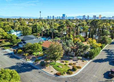 Las Vegas Single Family Home For Sale: 3205 Skipworth Drive