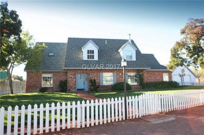 Las Vegas Single Family Home For Sale: 5645 Duneville Street