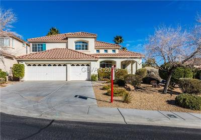 Las Vegas  Single Family Home For Sale: 10240 Red Bridge Avenue