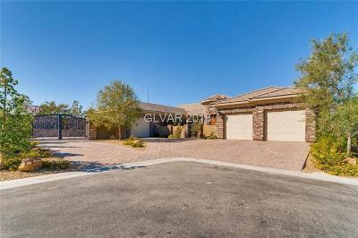 Las Vegas NV Single Family Home For Sale: $1,200,000
