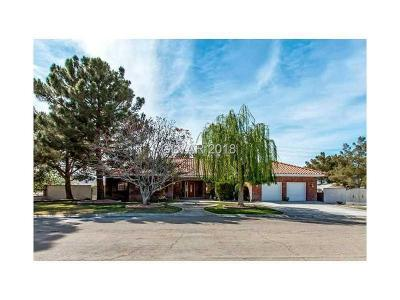 Las Vegas Single Family Home For Sale: 60 Levi Avenue