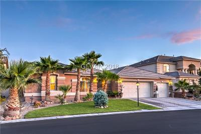 Single Family Home For Sale: 9045 Patinagem Avenue
