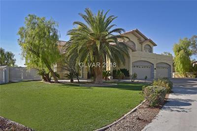 Las Vegas Single Family Home For Sale: 8221 Omni Court