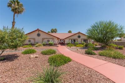 Las Vegas Single Family Home For Sale: 2010 Buffalo Drive