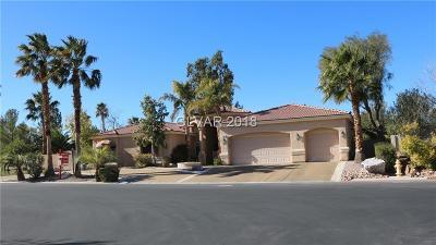 Las Vegas Single Family Home For Sale: 7011 Jurani St. Street