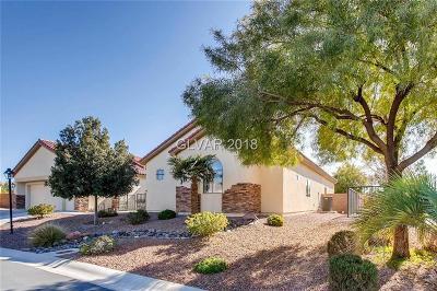 Las Vegas Single Family Home For Sale: 6111 Trevino Avenue