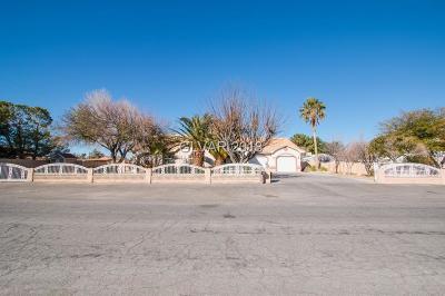 Las Vegas Single Family Home For Sale: 7340 Rosada Way