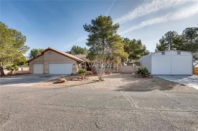 Las Vegas Single Family Home For Sale: 3220 Meranto Avenue