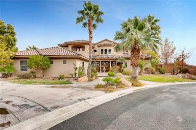 Clark County Single Family Home Contingent Offer: 1162 Thomas Bay Circle