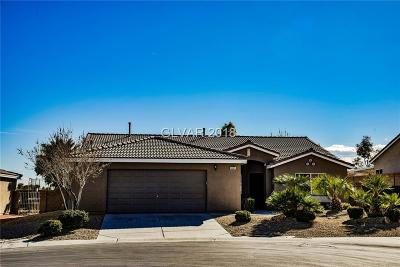 Las Vegas  Single Family Home For Sale: 8041 Canyons Park Avenue