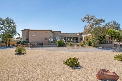 Las Vegas Single Family Home For Sale: 5600 West Oquendo Road