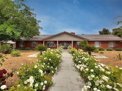 Las Vegas Single Family Home For Sale: 4024 Del Monte Avenue