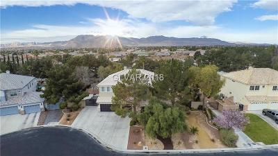 Las Vegas NV Single Family Home For Sale: $595,000