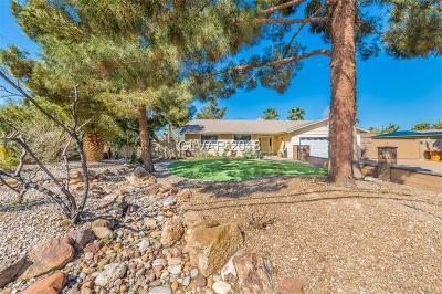 Las Vegas Single Family Home For Sale: 7355 Bruce Street