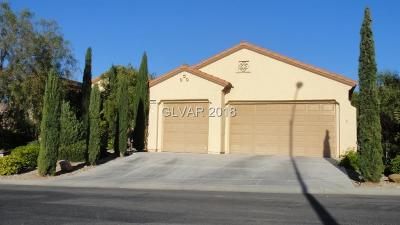 Single Family Home For Sale: 2084 Savannah River Street