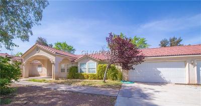 Clark County Single Family Home For Sale: 4370 Torino Avenue