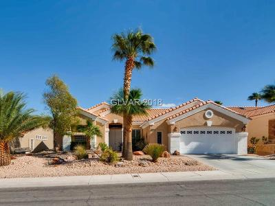 Las Vegas Single Family Home For Sale: 3108 Darby Falls Drive