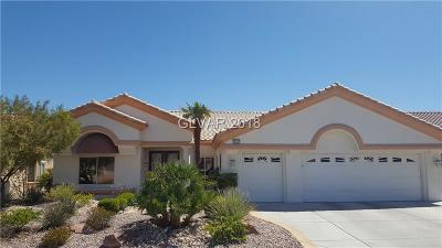 Las Vegas Single Family Home For Sale: 3016 Highland Falls Drive