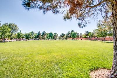 North Las Vegas Single Family Home For Sale: 6040 Harvest Dance Street