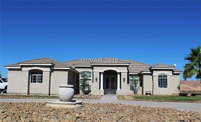 Overton NV Single Family Home For Sale: $425,000