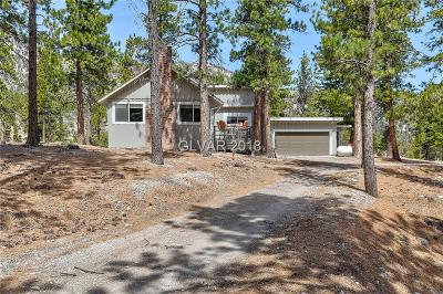 Clark County Single Family Home For Sale: 2445 Avalanche Trail