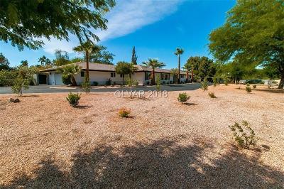 Clark County Single Family Home For Sale: 2988 East Vista Del Sol Avenue