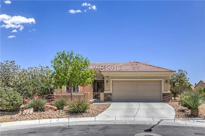 North Las Vegas Single Family Home For Sale: 3220 Laughing Thrush Court