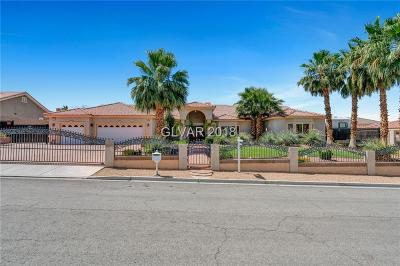 Las Vegas Single Family Home For Sale: 7041 Coldwater Drive