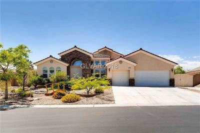 LAS VEGAS Single Family Home For Sale: 6213 Galileo Drive