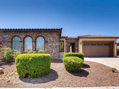 Las Vegas Single Family Home For Sale: 6181 Tarrant Ranch Road
